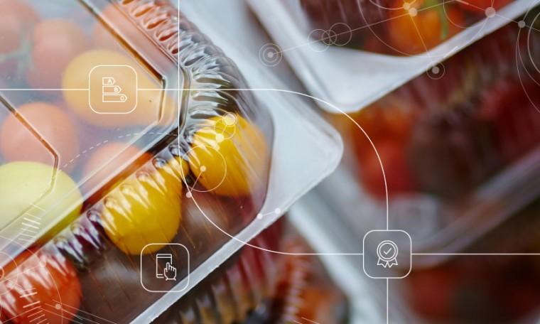 Plastic Sheet (Food Packaging)
